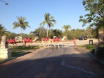 Morning in Broome includes camels